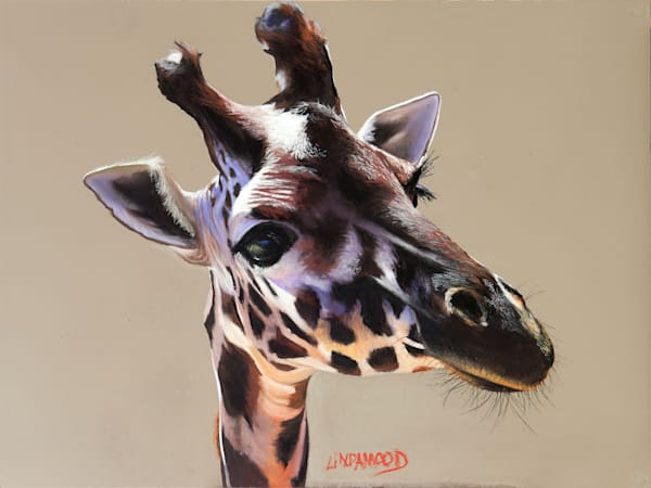 Just Giraffe