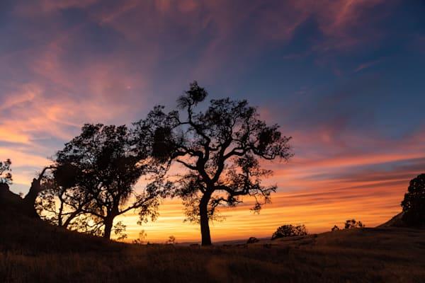 Sunset on Fig