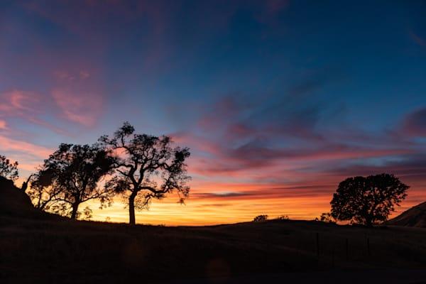3 oak sunset on Fig