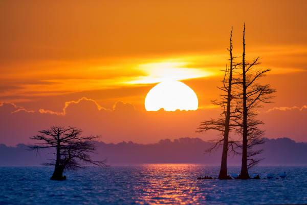 Sunrise Landscape Photography Prints | Robbie George