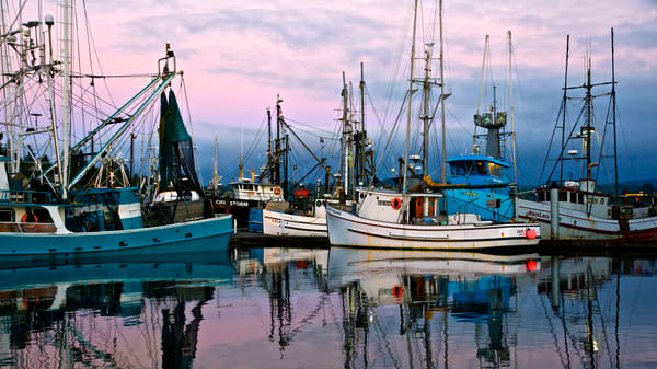 fishing boats, newport, oregon, yaquina bay, fishing fleet