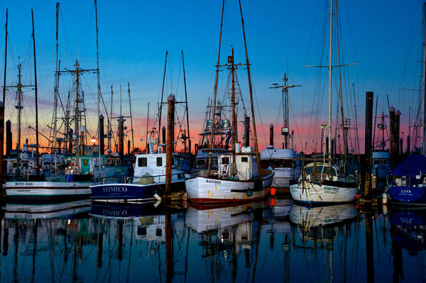 Fishing Boats, Charleston, Oregon, Coos Bay, sunset boats