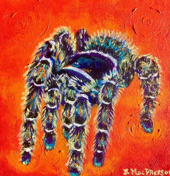 Medusa the Tarantula - Acrylic Painting on Canvas by Becky MacPherson