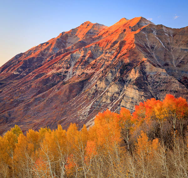 Squaw Peak Aspens with Timpanogos