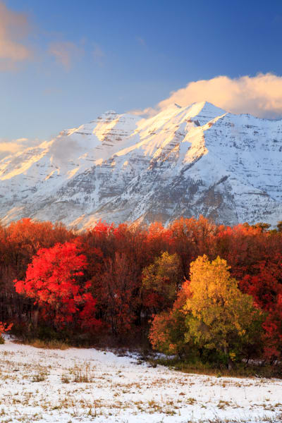 Timpanogos in Full Autumn Glory