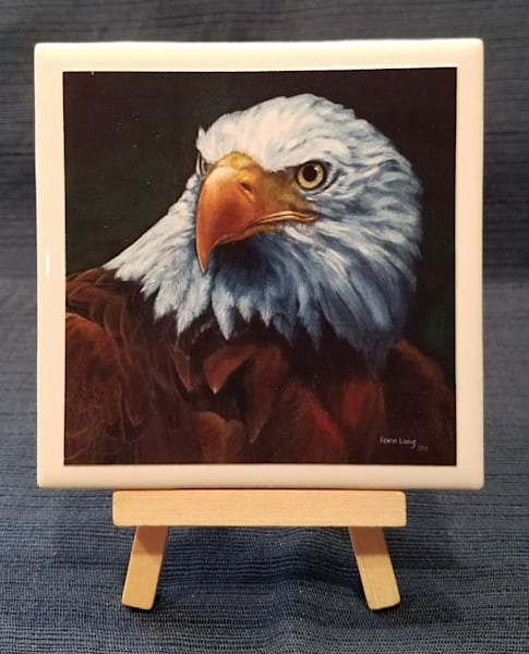 Bald Eagle | Kevin Lang Fine Art