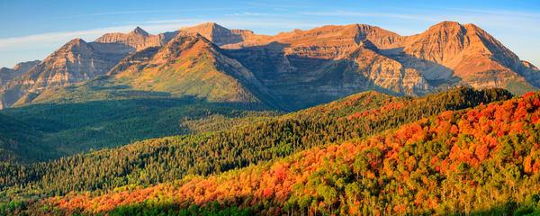 Timp Fall Color Panorama