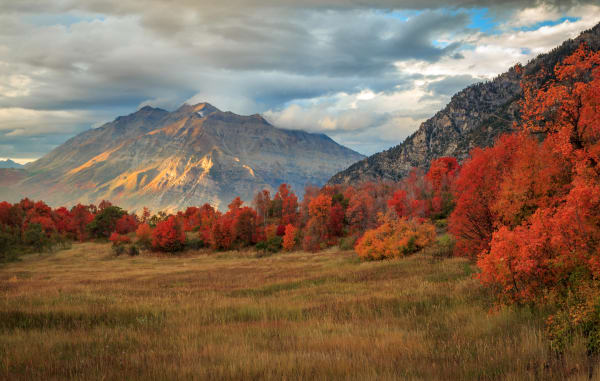 autumn magic in the wasatch