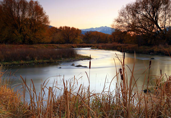 Autumn on the Provo River