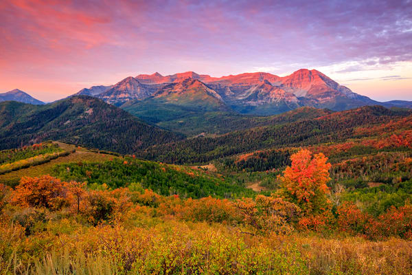 wasatch back autumn morning