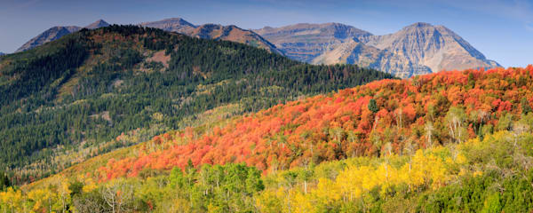 panoramic fall colors in the Wasatch back