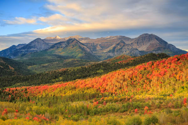 autumn splendor in the wasatch back utah