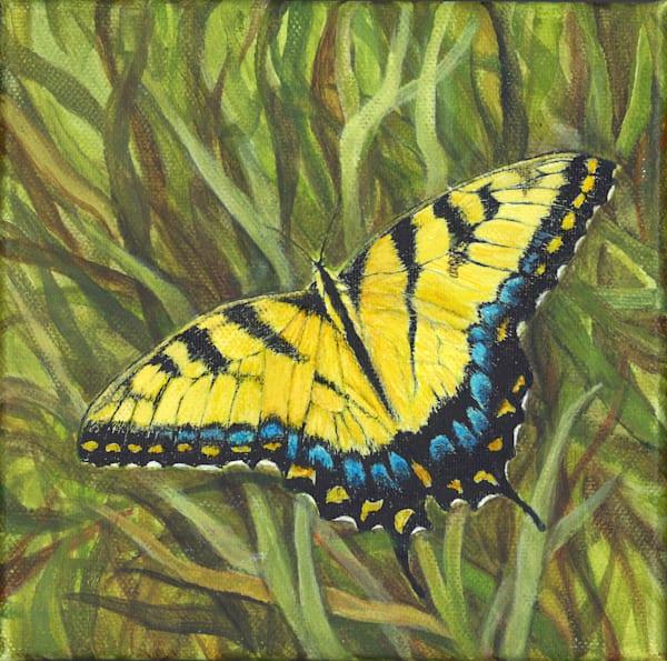 Yellow Swallowtail Art   Lori Vogel Studio