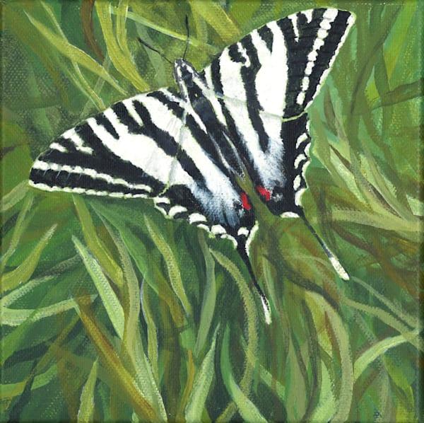 Zebra Swallowtail Art   Lori Vogel Studio