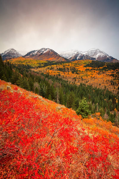 first fall snow on timpanogos