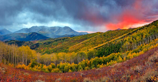 fiery fall panorama