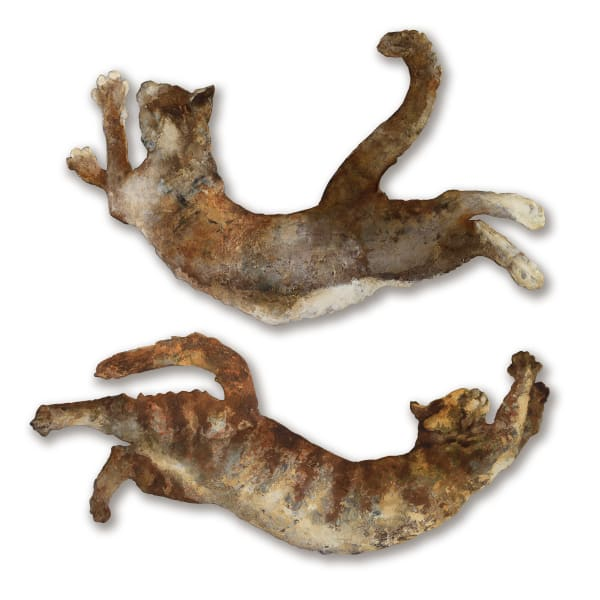 Fly Cats On The Loose
