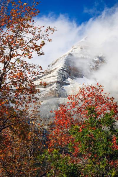 fall snow on timp east ridge