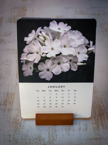 2019 Art of Flower Portraiture Wood Block Calendar