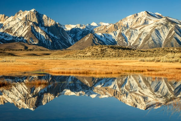 Owens Valley Reflections