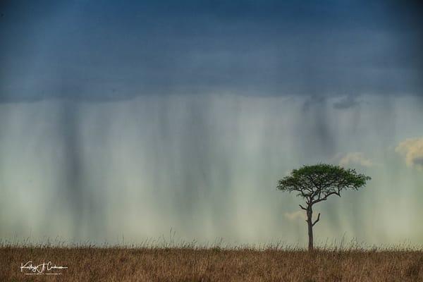 Africa Landscape  1629 Photography Art | Images2Impact