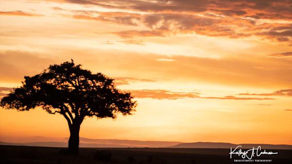 Africa Landscape  3714 Photography Art | Images2Impact