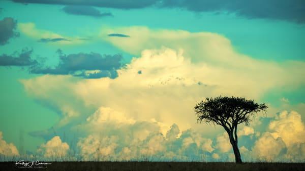 Africa Landscape  5960 Photography Art | Images2Impact