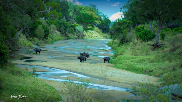 Africa Landscape  8928 Photography Art | Images2Impact