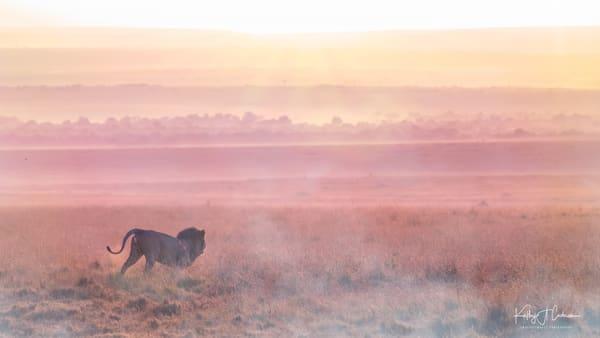 Africa Landscape  9372 Photography Art | Images2Impact