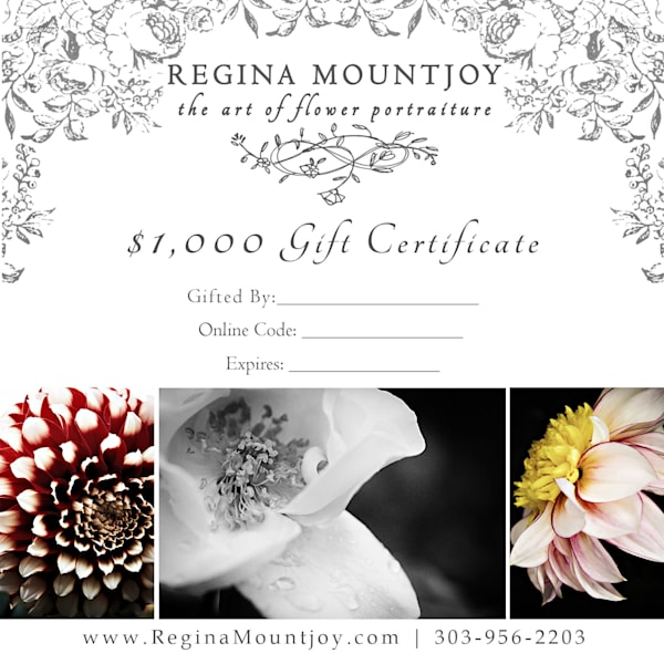 $1000 gift card for Flower Art
