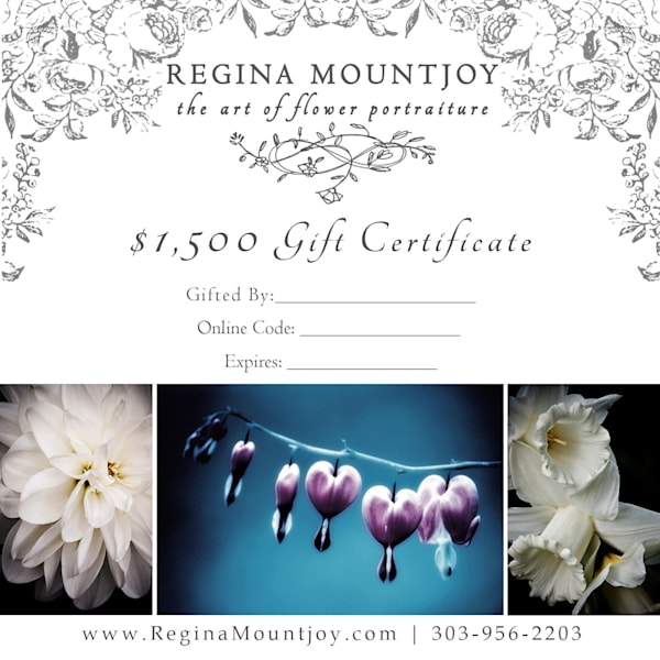 $1500 gift card for Flower Art