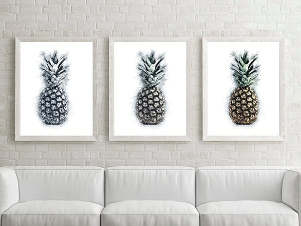 Pineapple drawing framed triptych by Christina Stefani