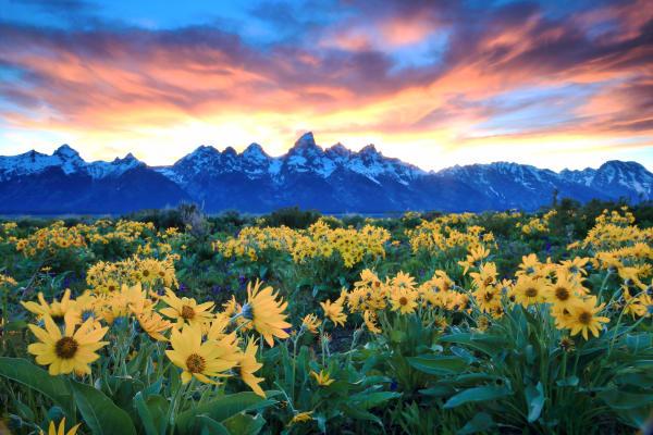 Teton Mountains Nature Photography Prints | Robbie George