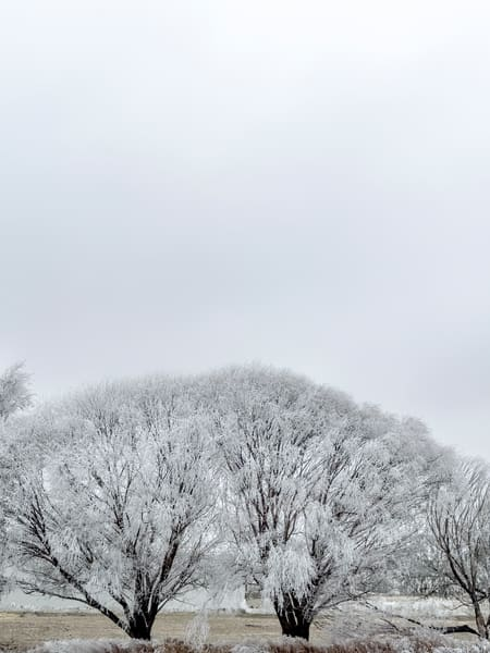 White Frost 3 is a white on white composition with subtle hints of color making it a great fine art print.