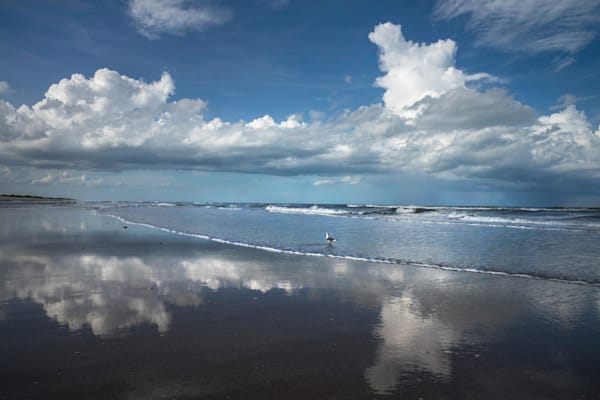 7259-Canerveral-National Seashore-Florida-