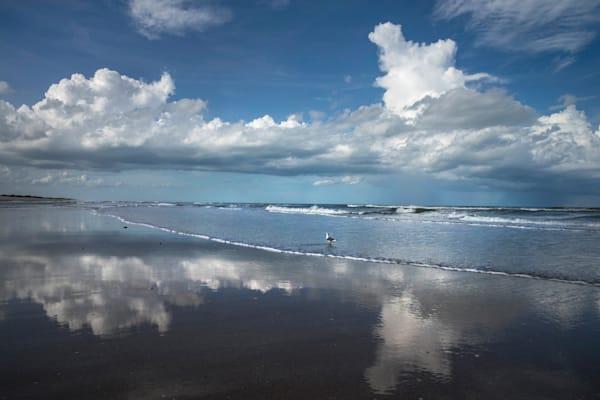 7259 Canerval Seashore Florida  Art | Cunningham Gallery