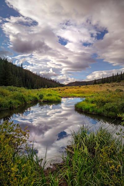 6758 Beaver Pond Reflection  Art | Cunningham Gallery