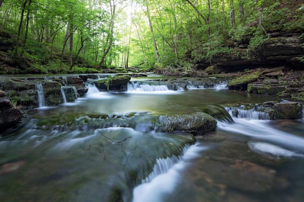 7432 Busby Falls Tennessee Art | Cunningham Gallery