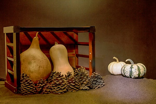 Fine Art Photograph of Old Fruits by Michael Pucciarelli