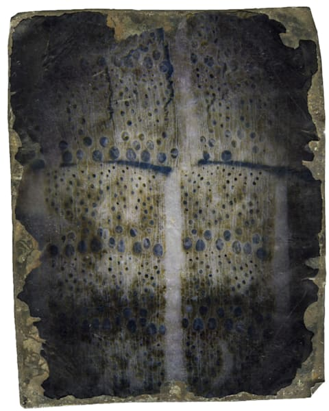 Veil tin type fine art