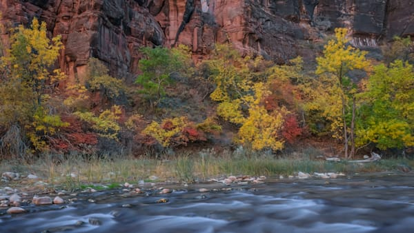 Enter Zion's Narrows