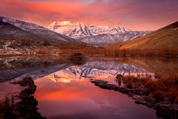 timp beaver pond sunrise