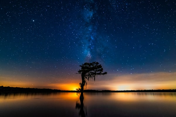 Milky Way Louisiana swamp photography