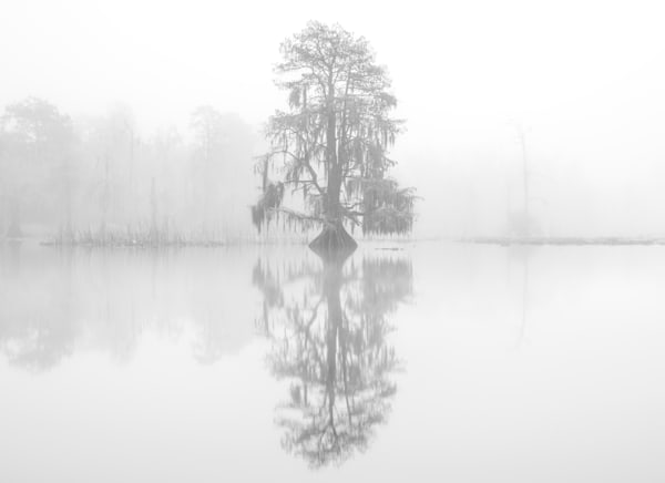 Ghosts in the mist photography print