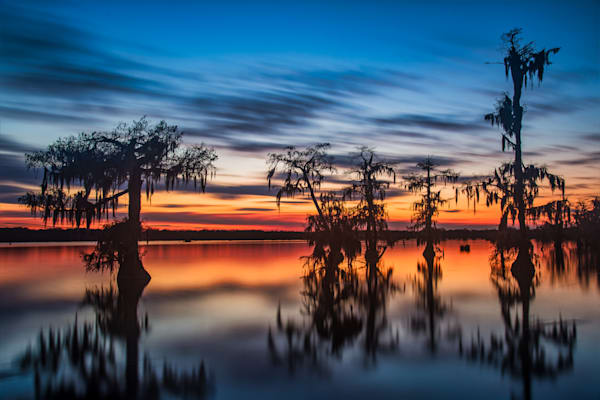 Lake Martin Sunset swamp photography