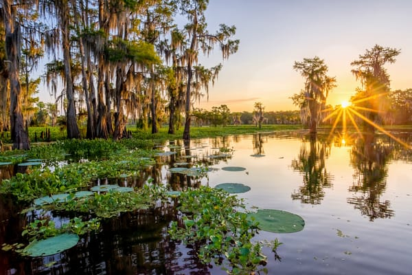 Duck Lake Atchafalaya Basin sunrise photography