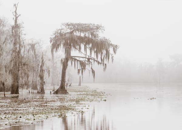 Blind River fog photography print
