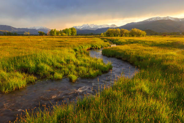golden field in heber valley utah