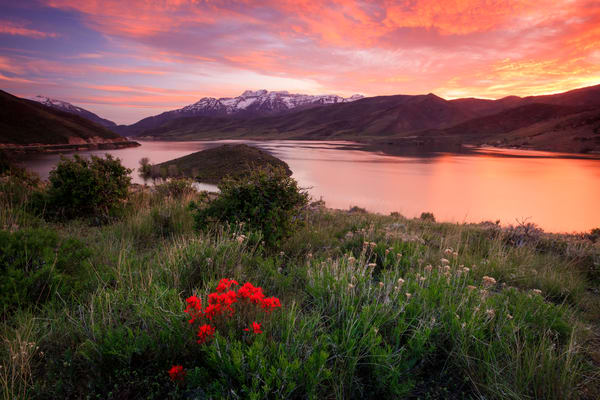 fiery deer creek sunset with wildflowers