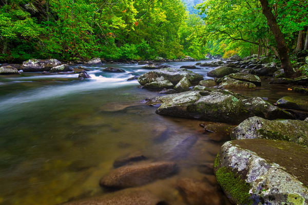 Tellico River rapids photography